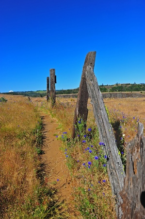 deteriorating: Deterioating fence along a hiking trail leading out to the plains in the Columbia River Gorge.