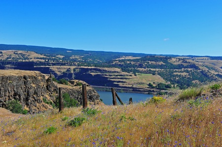 deteriorating: Wild flowers grow along  a deteriorating fence and a hiking trail that leads to a resting spot overlooking the picturesque Columbia River Gorge and the Washington State side of the river. Stock Photo