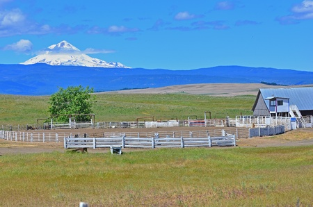 corall: An empty rodeo corall with a view of Mount Hood Oregon sets beneath a blue sky with a few thin clouds. Stock Photo