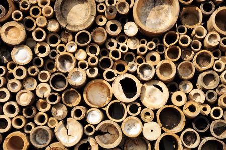 bamboo cross slice Stockfoto