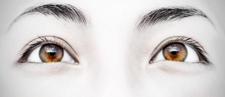 여자의 아름 다운 갈색 눈의 근접 촬영 이미지 스톡 콘텐츠
