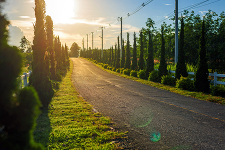 country road in sunset, vintage background Stock Photo
