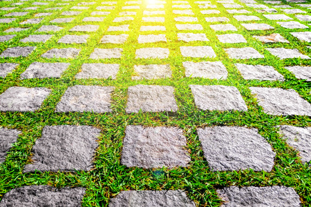 The Stone block walk path in the park with green grass background with warm sunlight Stock Photo