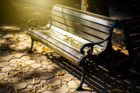 wooden bench in the park with warming morning Light Stock Photo