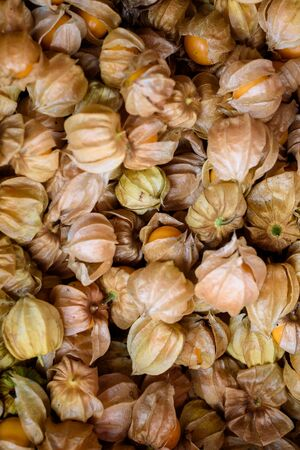 Ripe Cape Gooseberry or Physalis fruit background Stok Fotoğraf