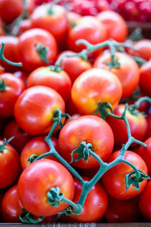 ripe fresh red tomatoes background