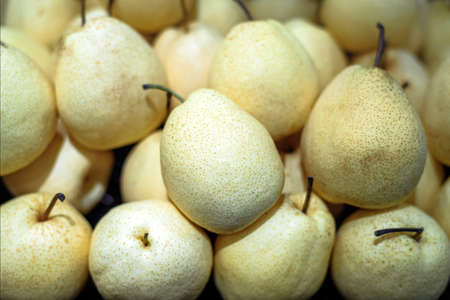 Asian pears or Chinese pears fruit background