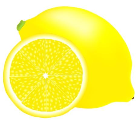 レモン  イラスト・ベクター素材