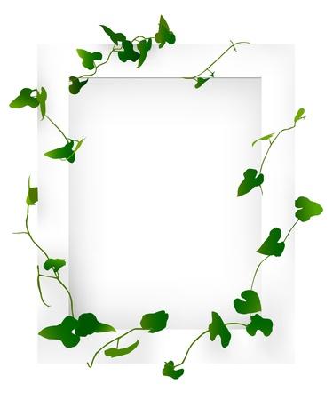 白と緑のフレーム  イラスト・ベクター素材