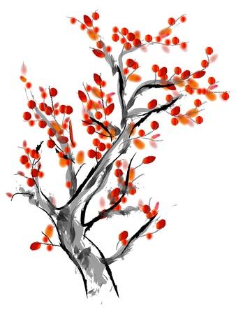 Plum flower Stock Photo - 13727710