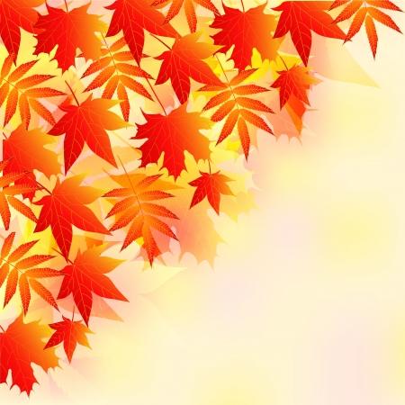 Autumn Stock Photo - 14310335