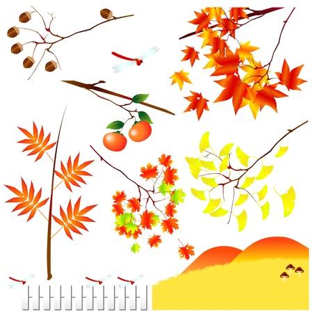he no background: Autumn