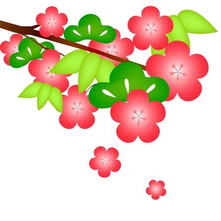 sho: Sho Chiku Bai