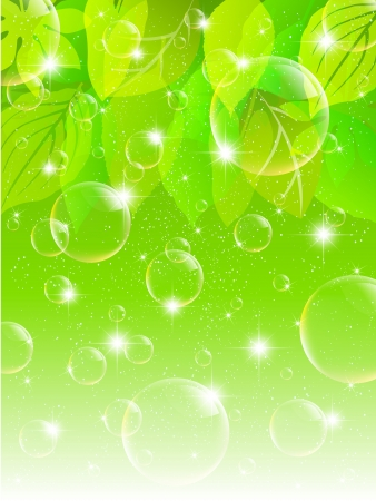 Plant leaf background bubble Stock Vector - 17962841