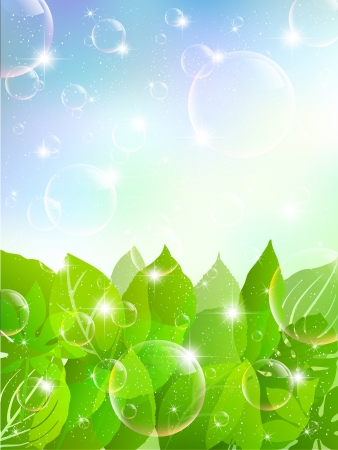 Bubbles background plant leaves Vector