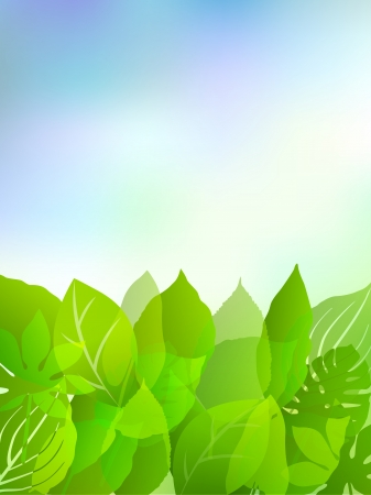 Plant leaf background sky Stock Vector - 17962791
