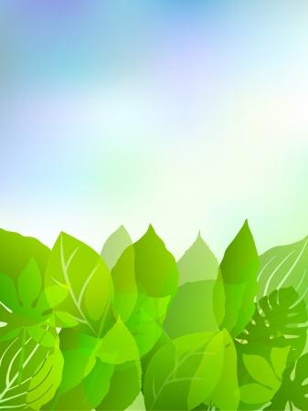 Plant leaf background sky Stock Vector - 17962791