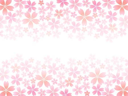 graduate asian: Spring pink cherry blossoms background Illustration
