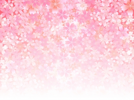 Spring pink cherry blossoms background Illustration