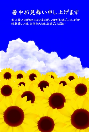 Sunflower Get Well midsummer sky background Stock Vector - 18179682