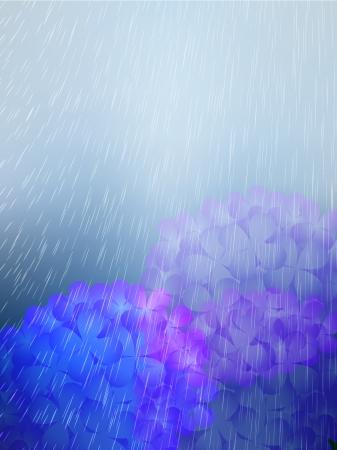 the rainy season: Rainy season Illustration