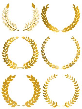 gold leaf: Laurel Laurier leaf
