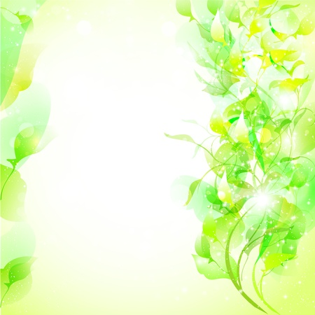 葉植物の背景