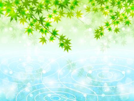 Summer sky maple water