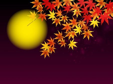秋の月見満月背景と夜