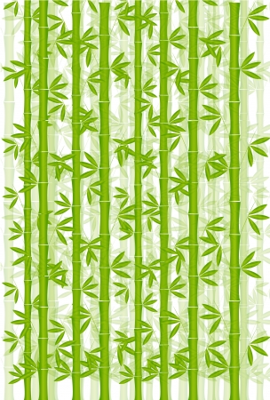 Bamboo New Year s greeting card background Vector