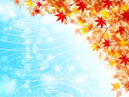 autumn background: Maple autumn leaves background