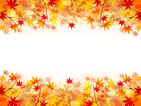 fall landscape: Maple autumn leaves background