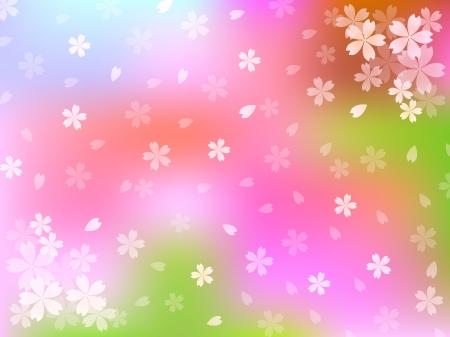 cherry tree: Sakura cherry tree background Illustration