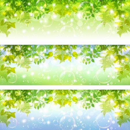 leaf background: Leaf background soap bubble Illustration