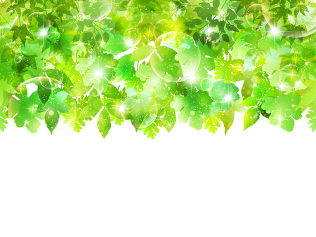 Plant leaf background Vector