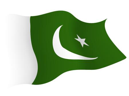 파키스탄 국가 플래그