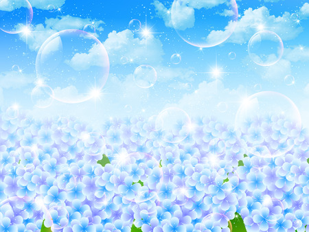 Hydrangea sky landscape