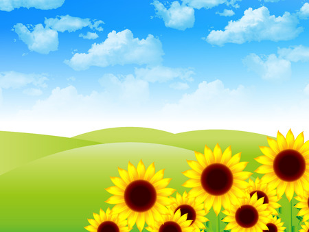 Sunflower landscape background Vector