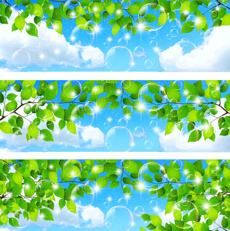 Fresh green leaf background Vector