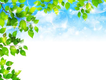 新鮮な緑の葉の風景