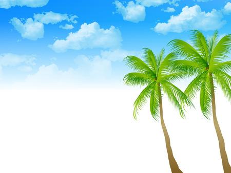 Background palm tree
