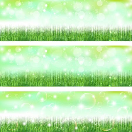 herbe ciel: Sky herbe paysage Illustration