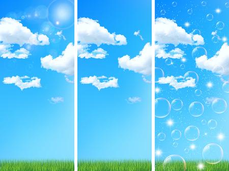 grass lawn: Sky grass lawn