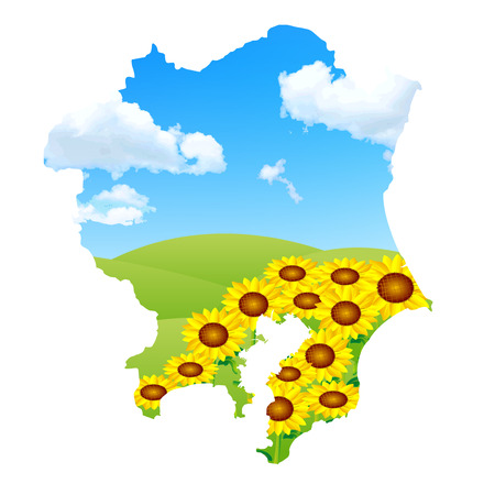 kanto: Kanto sunflower landscape Illustration