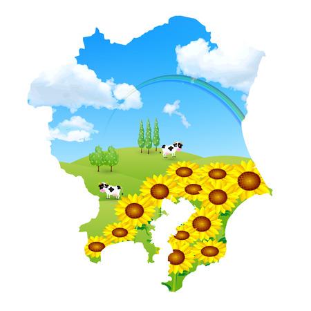 kanto: Kanto sunflower ranch Illustration