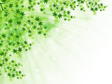 Fresh green leaf landscape Vector