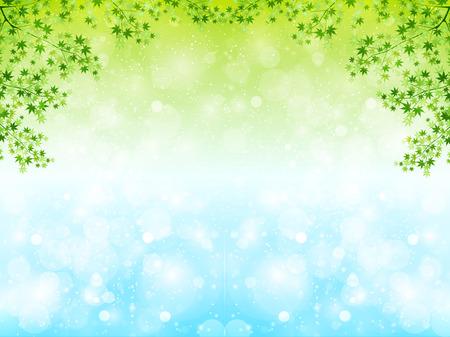Maple leaf scenery Vector