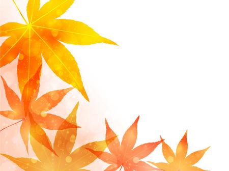 Maple Blätter im Herbst Hintergrund