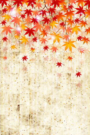 Maple autumn leaves background Vector