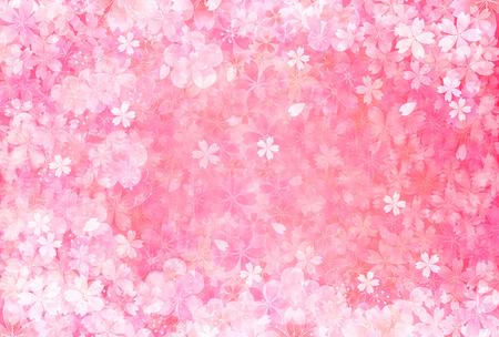 Cherry pruim wenskaarten
